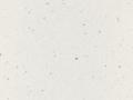 andromeda biała.jpg