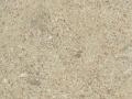 złoty piasek.jpg