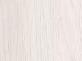 dąb biały.jpg