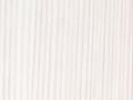 modrzew biały.jpg